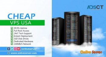 Get Your Business with Cheap VPS USA Hosting By Onlive Server