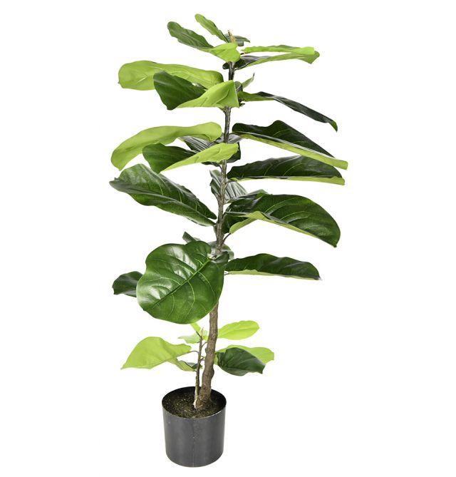 Artificial Giant Fiddle Leaf Plant