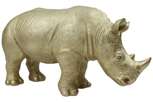 Rory the Rhino