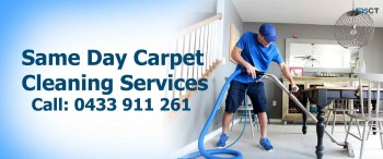 Affordable Carpet Steam Cleaning