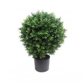 Topiary Shrub (Hedyotis) 70cm Mixed Gree
