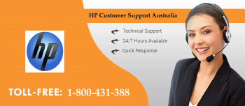 HP Customer Support Number 1-800-431-388