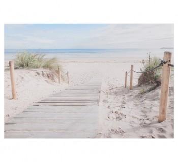 Beach Path Wall Art