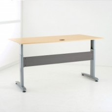 Conset DM15 Electric Sit Stand Desk