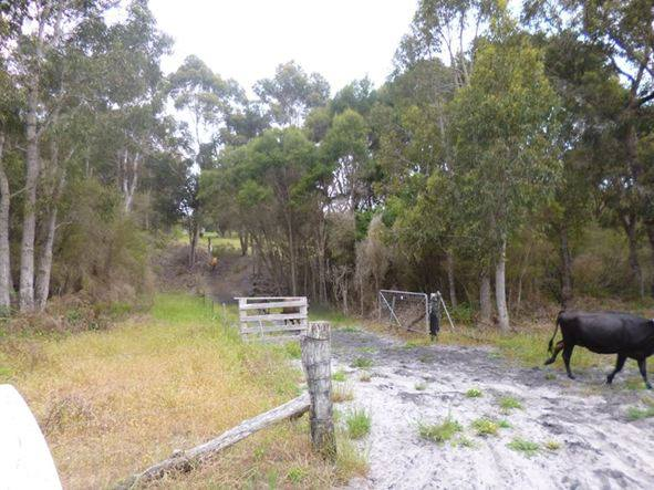 Lot 12974 Northcliffe Log Road