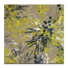 Wattle by Sally Adams Canvas Art Print