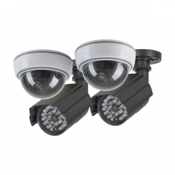 TECHVIEW Dummy Camera Theft Prevention K