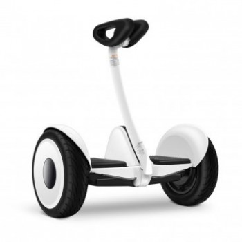 Mini Pro the Smallest Segway Style