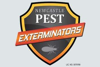 Newcastle pest exterminators Residential & commercial