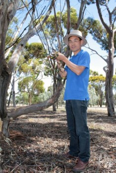 THE LAND pest control service