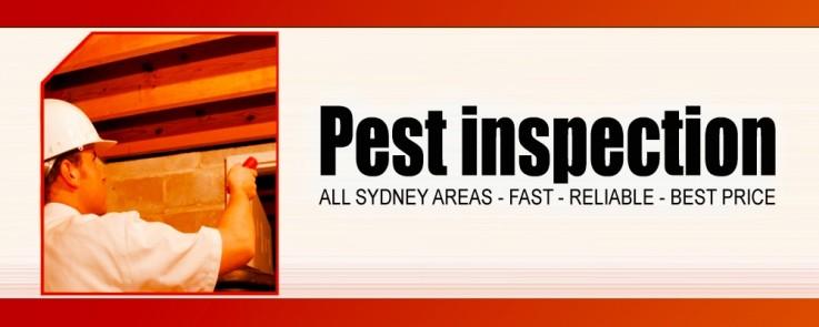 Beat the bug pes ...