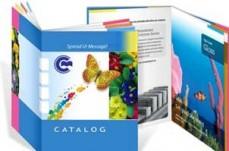 Doran Printing Pty Ltd vistaprint business cards