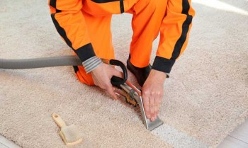 Cheap Carpet Steam Cleaners With Excellent Quality Care
