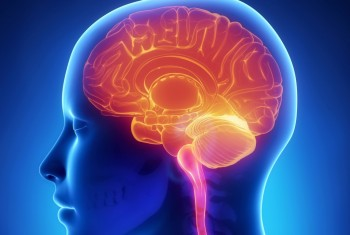 Highly-Experienced Neurosurgeon in Melbourne