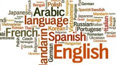 Are You Finding The Reliable Translation Services Online?