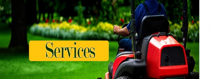 Best Lawn Care G ...