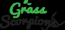 Landscaping Services Brighton   Grass Scorpion