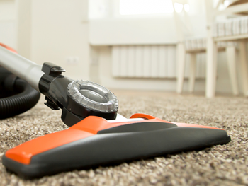 Best Carpet Cleaning Gold Coast