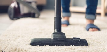 Best Carpet Cleaning Sunshine Coast