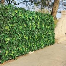 Buy Artificial Ivy Wall