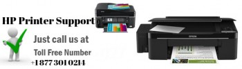 Are you looking for HP Printer Support Service