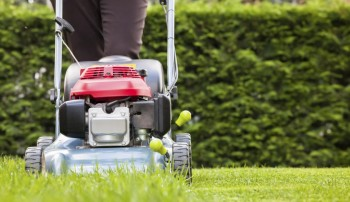 Lawn Mowing Services in Wollongong