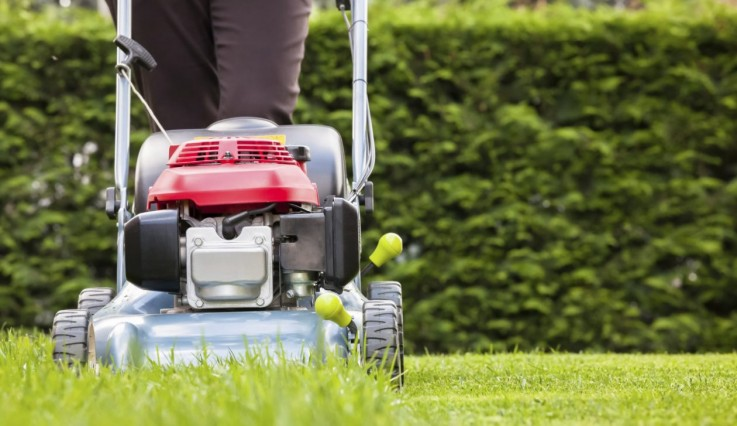 Lawn Mowing Serv ...