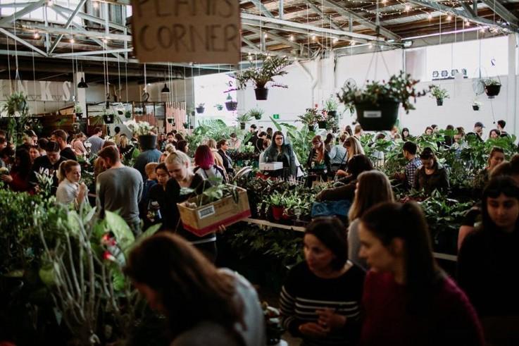 Sydney - Huge Indoor Plant Warehouse Sal
