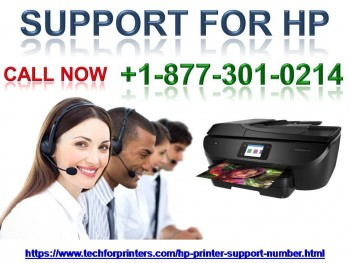 Quick Issues Resolve Support For Hp 877-