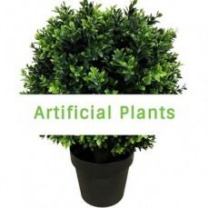 Artificial Indoor and Outdoor Plants