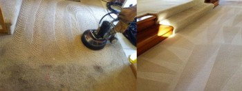 Carpet Stain Removal Beenleigh