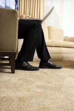 BREEZE CARPET & LOUNGE STEAM CLEANERS