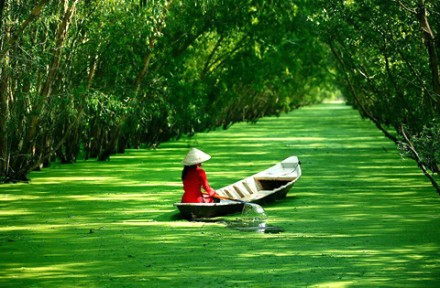 Great Value Holiday Packages in Vietnam