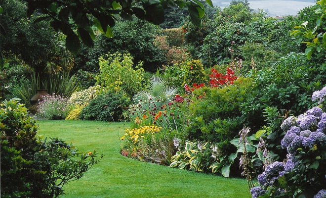 Lawn And Garden Maintenance By Amico