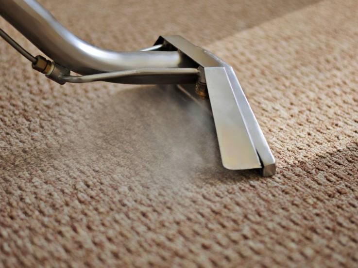 Carpet Mould Rem ...