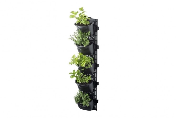 Want to Start Vertical Garden? Visit Us