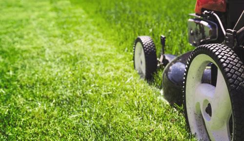 Value for Money Garden Landscaping