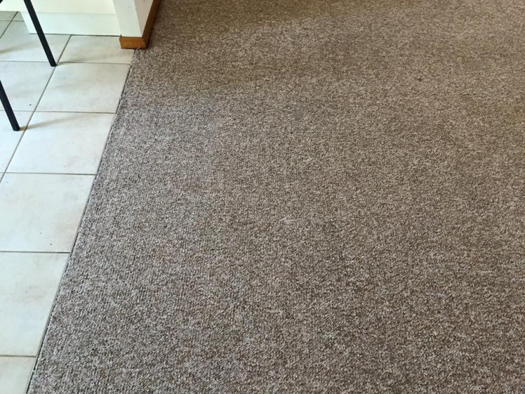 Get Carpet and Tile Cleaning Services with Cheap Prices in Newcastle