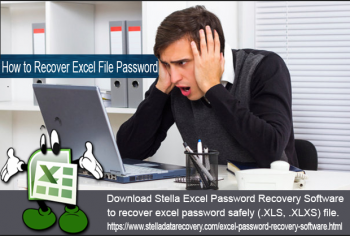 Microsoft excel password recovery