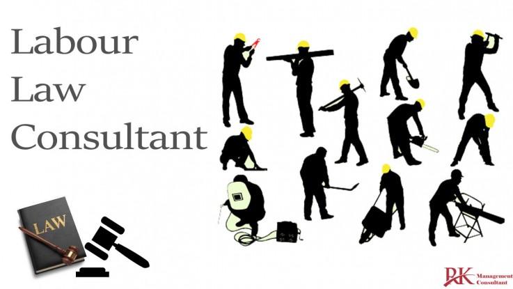 PF Consultant or ...