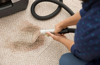 Carpet Cleaning Services Ferntree Gully