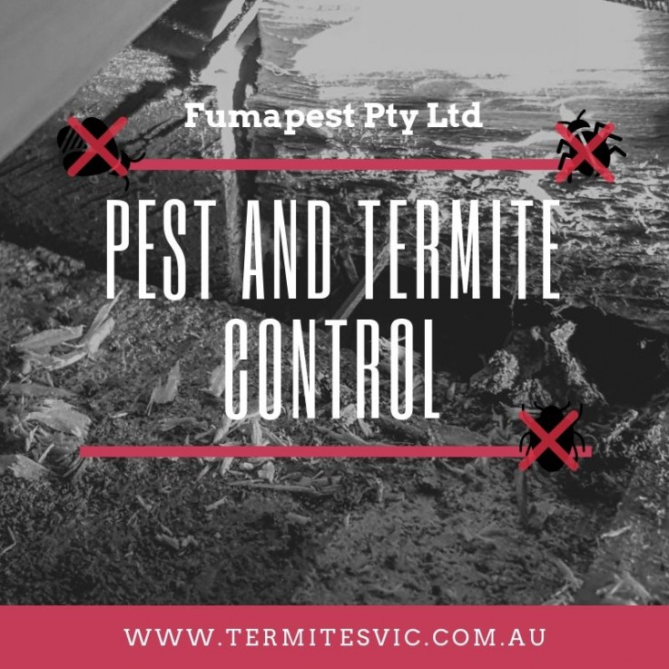 Pest Control Don ...