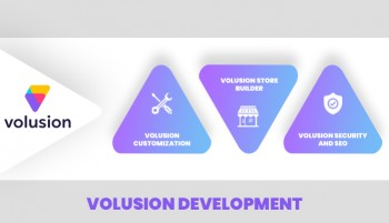 Looking for Best Volusion Developer Serv