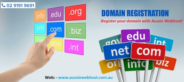 How To Transfer Or Renew Domain Name?