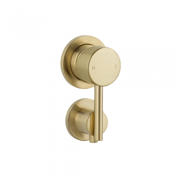 Elysian Shower Diverter – Brushed Brass