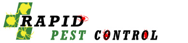 Rapid Pest Inspections, Treatment and Pest Control in Stretton, Brisbane, QLD.