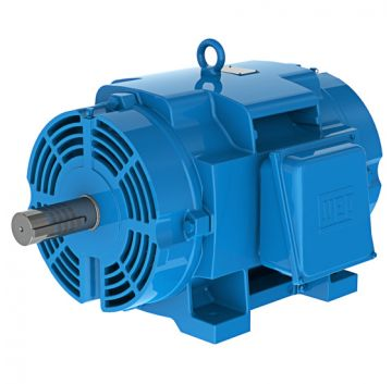 Looking for Electric Motor Repair Shop?