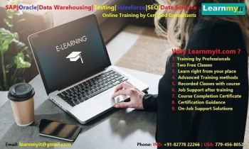SAP, Oracle, Data Warehousing, Testing,