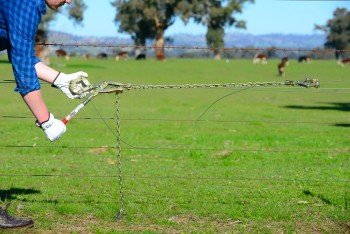 Keep your fencing tight by using fencing